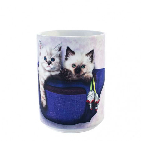 Fanny Pack Kittens Ceramic Mug