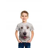 Terrior Stone Dust T-Shirt