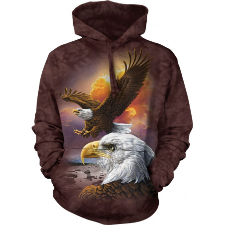 Eagle and Clouds
