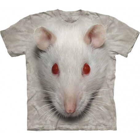 Big Face White Rat