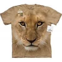Big Face Lion Cub