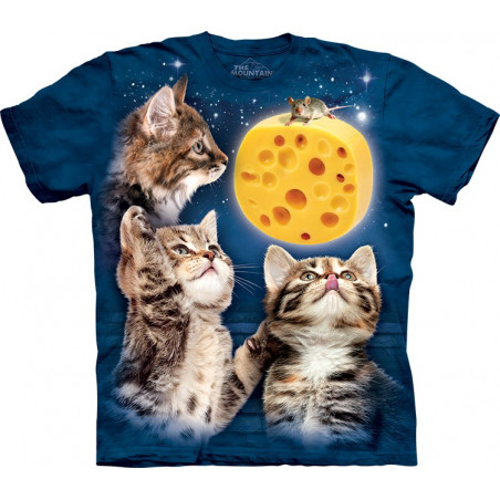 Three Kitten Cheese Moon