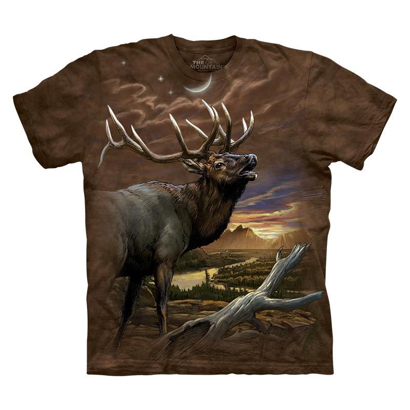 Elk at Dusk