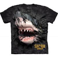 Shark Week Breakthrough