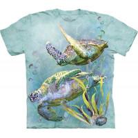 Sea Turtles Swim