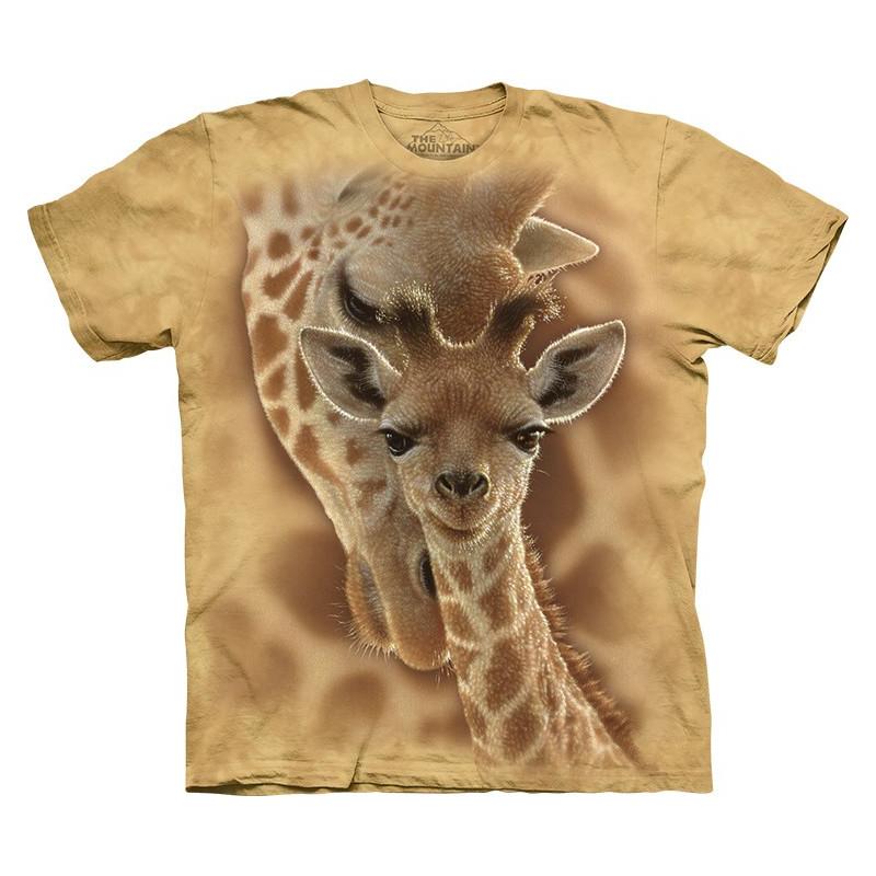 Newborn Giraffe