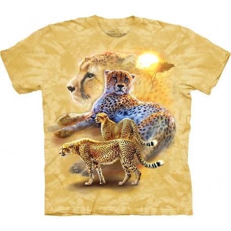Serengeti Gold Cheetahs