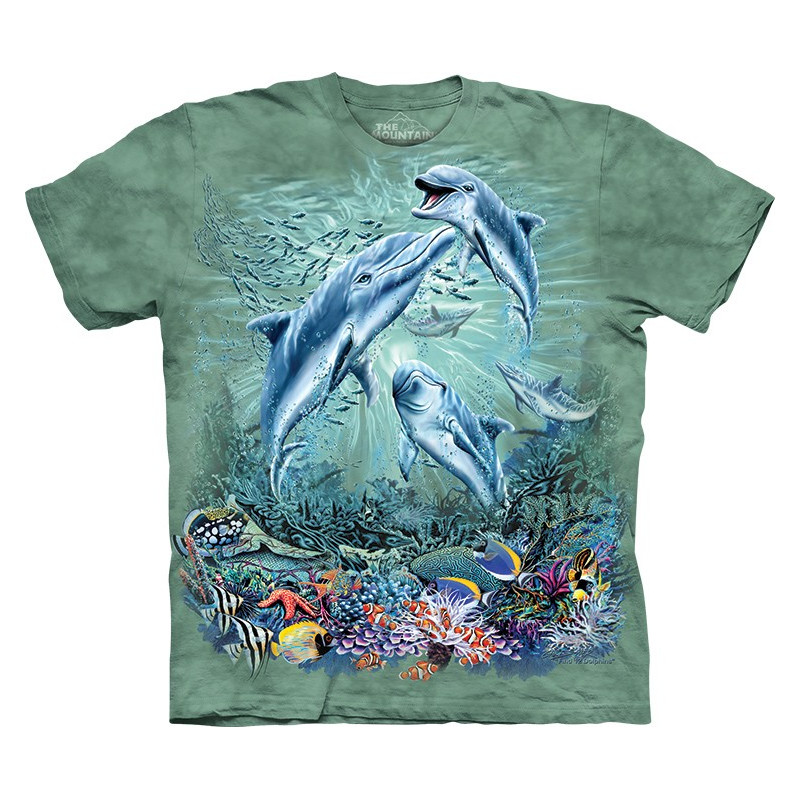 Find 12 Dolphins