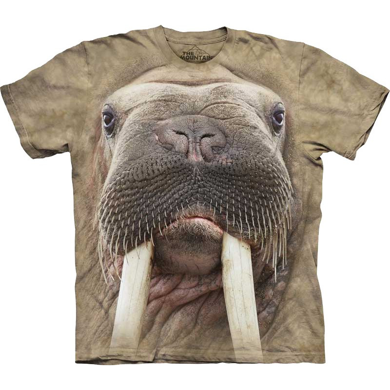 Cool Graphic T Shirts For Men