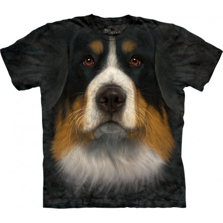 Bernese Mountain Dog Face