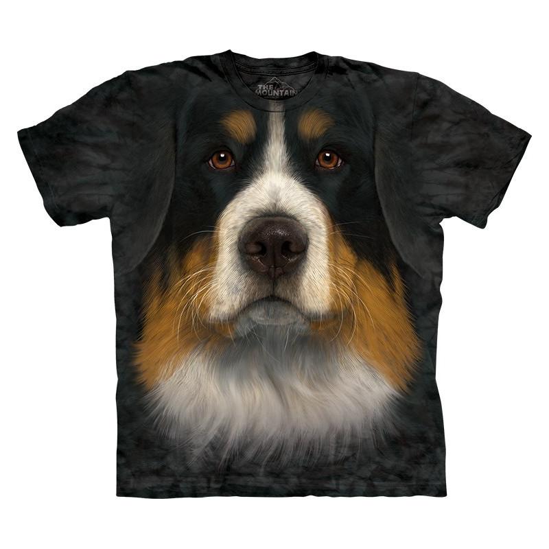 Bernese Mountain Dog Face
