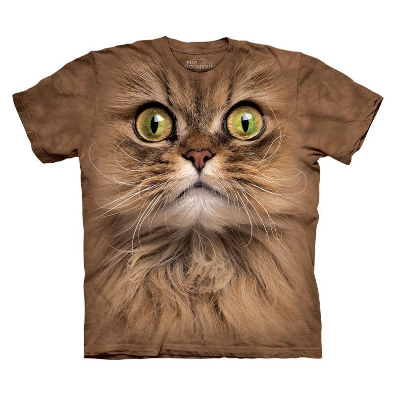 Big Face Brown Cat