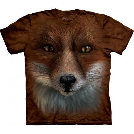 Big Face Fox