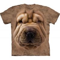 Big Face Shar Pei Puppy