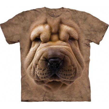 Big Face Shar Pei Puppy