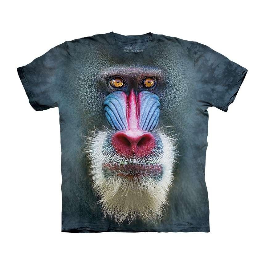 North Face T Shirts Men