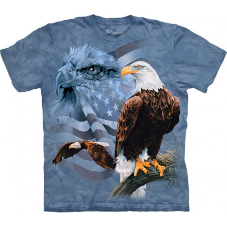 Faded Flag Eagles T-Shirt The Mountain