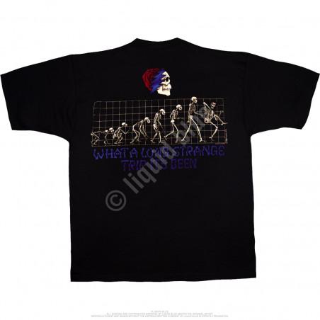 Grateful Dead Evolution Black T-Shirt Liquid Blue