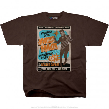 James Brown Soul Brother No. 1 Brown Athletic T-Shirt Liquid Blue