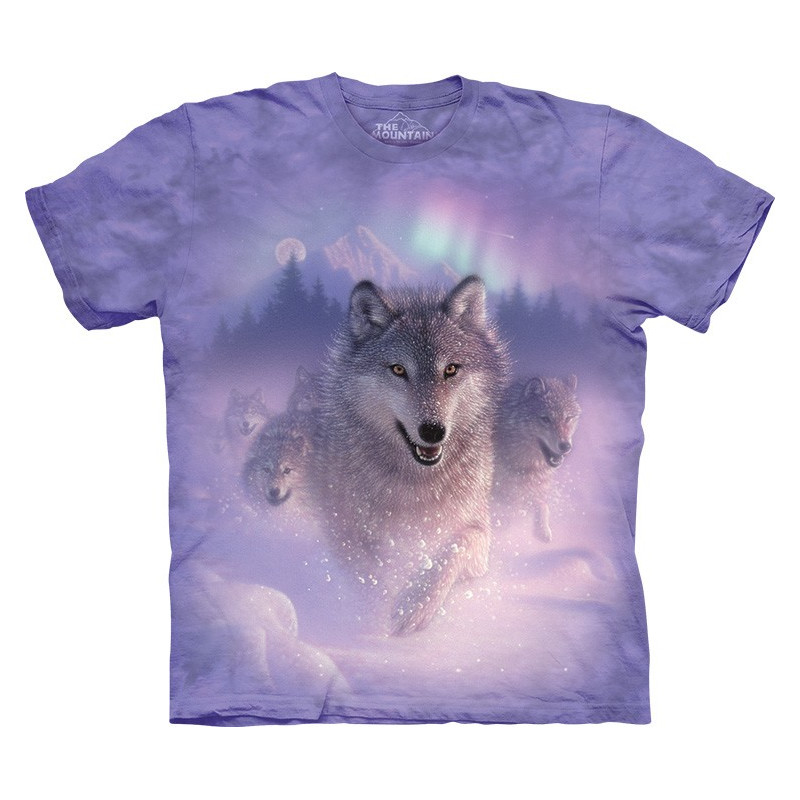 Northern Lights T-Shirt The Mountain